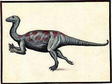 Zalmoxes Dinosaur Painting Handmade Oil on Canvas India Wild Animal Ethnic Art