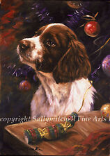 Springer Spaniel Christmas cards pack of 10 by John Trickett C253x