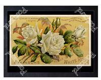 Historic Atkinson's Essence of White Rose perfume, c.1890 Advertising Postcard