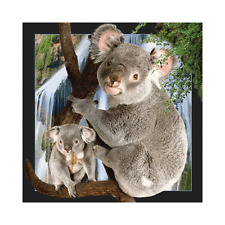 Worth Keeping 3D Lenticular Post Card - KOALA - #WK-PC-012