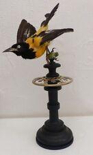 Oiseau naturalisé, monté sur piétement en bois noirci et bronze, XIX ème