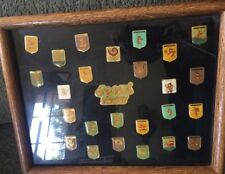 1988 Seoul Summer Olympic Games Hodori Mascot Collector Pins in Display Case