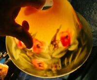 LS*FF10  WONDERFUL Vintage Frosted Glass Reverse Hand Painted Floral Lamp Shade