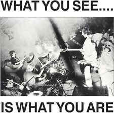 Alternative TV / He - What You See Is What You Are [New CD]