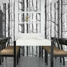 10M Arthouse Rustic Frosted Wood Black and White Birch Tree Wallpaper Background