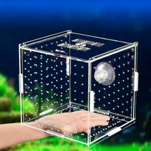 Fish Tank Breading Box Aquarium Transparent Isolation Boxes Double Grid Supplies