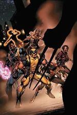 Uncanny X-Men The New Age Vol 2: The Cruelest Cut (2005) New Trade Paperback