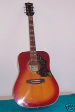 1960's 70's Crown Hummingbird Beautiful acoustic guitar MI Japan Good Condition