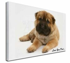 More details for bear coat shar-pei 'love you dad' x-large 30