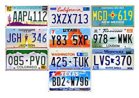 10 USA LICENSE PLATES - AMERICAN TAG LOT ART CRAFT WALL DECOR MANCAVE (10D)
