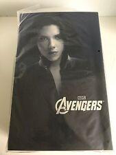 "Hot Toys Black Widow (The Avengers) 12"" Figure"