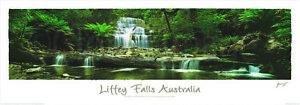 Liffey Falls  Australia. printed Poster