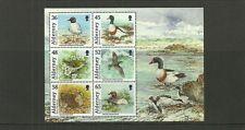 Les oiseaux alderney-2011-alderney minisheet nouveau numéro-neuf sans charnière