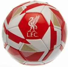 Liverpool FC Skill Ball-Size 1 Reflex Football Gift