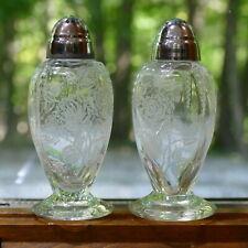Heisey Waverly Salt & Pepper Shaker Etched Crystal  Rose Pattern ~ Elegant Glass
