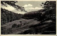 RENGSDORF b. Neuwied AK Dt Reich 1932 Partie Laubachtal Wiesen Wald Partie