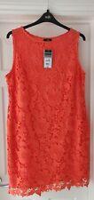 Vestido De Encaje Wallis Coral Color Talla 18. nuevo con etiquetas.