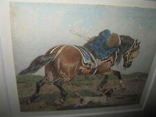 FORT Theodore, *1810 Traumhaftes Pferdebild - Museal