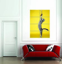 Tabby Cat Jumping Toy Feathers Giant Wall Art Print Home Decor Poster