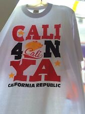 YA best of ebay Cali California Republic lot 100 heat press transfers wholesale