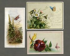 BUTTERFLY Daisies ROSES Bees BIRD Victorian New Year 1880's Greetings 3 Cards