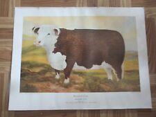 Ross Butler Cow Print Herford Standard Type Canadian Breeders Farm Animal Beef