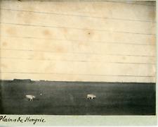 Hongrie, vue sur les plaines Hongroises  Vintage print,  Photomécanique  8
