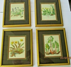 Group of 4 Vintage mid- century botanical wildflower lithograh prints,colorful