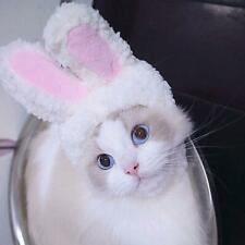 Cute Pet Plush Bunny Rabbit Hat with Ears for Cat & Dog Party Accessory Headwear