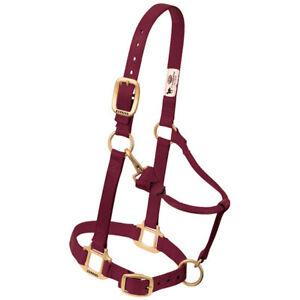 Weaver Medium Horse Adjustable Nylon Halter