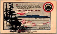 Vintage 1900s YELLOWSTONE NATIONAL PARK Advertising Postcard Saddle Horse Trips