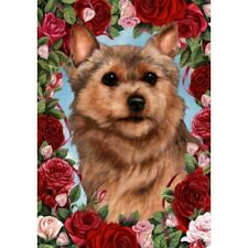 Roses Garden Flag - Norwich Terrier 191521