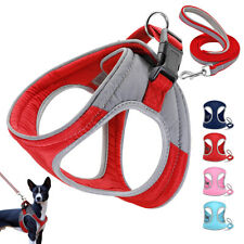 Reflective Pet Dog Harness and Lead Leash Soft Walking Vest for Small Medium Dog