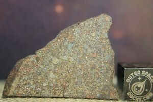 NWA 10499 LL3 Primitive (Billions of years) Chondrite Meteorite 3.5g part slice