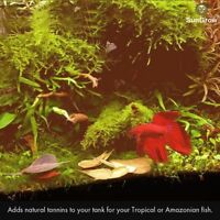 50 SunGrow Mini Catappa Leaves: Betta homes, Aquarium Decor, For fishes & snails