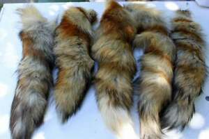 Fox Tail Red Fox Tails Costume Cosplay Keychain Fur Pelt Tail From Animal Fox
