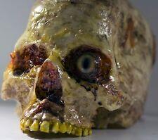 Halloween Horror Movie Human Head Prop
