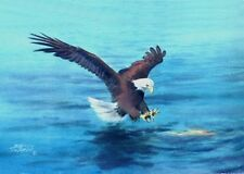 """ACEO"""" BALD EAGLES' CATCH by Sharon Sharpe!!!!"""
