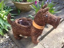 Lovely Rustic Brushwood Scottie Dog with Faux Leather Collar Garden  Planter