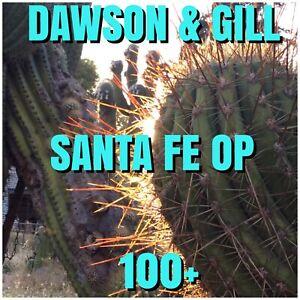 Echinopsis   -   SANTA FE  OP.   100+.    Dawsons & Gill       Cactus.