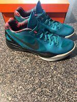 Nike Zoom Hyperdunk 2011 size 10