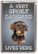"Dachshund Dog Fridge Magnet No. 3  ""A VERY SPOILT ..... LIVES HERE"" by Starprint"