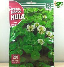 Trebol Blanco Enano Huia Tapizante ( 250 gr ) semillas Trifolium repens Trébol