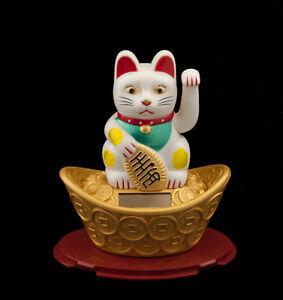 Gatto Portafortuna Giapponese Maneki Neko Bianco Su Son Lingotto Solare 304