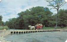 Bandera Texas Mayan Ranch Horse Carriage Vintage Postcard K77888
