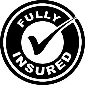 Fully Insured decals stickers decals use on Van, Car, window etc