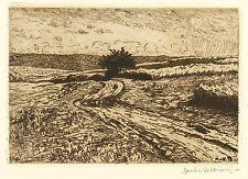 HANS RICHARD VON VOLKMANN - Feldweg - Radierung 1907