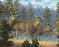 """Whitetail Deer Family Cotton Fabric Panel Digitally Printed 35"""" x 44"""""""