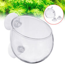 Aquatic Plant Crystal Glass Cup Pot Aquarium Aquascaping Fish Tank Holder Us