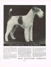 1934 Big Vintage Otis Co - Lone Eagle Wire Haired Fox Terrier Dog Photo Print Ad
